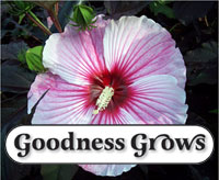 Goodnessgrows